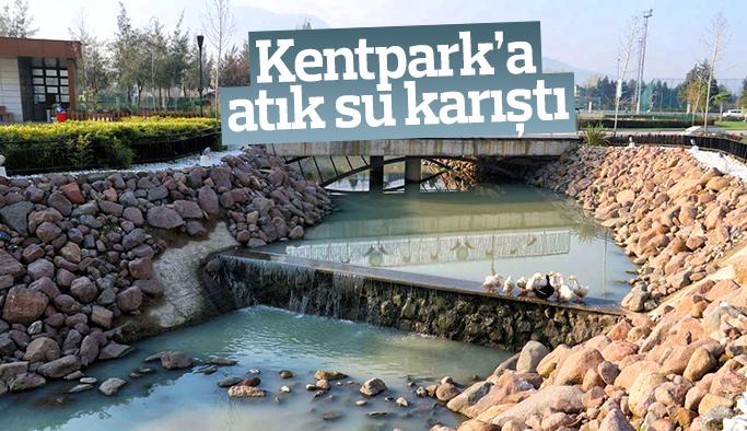 Manisa Atatürk Kent Park'a atık su karıştı
