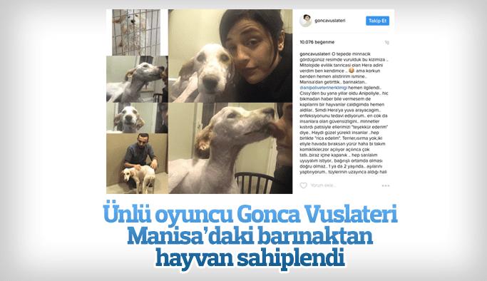 Ünlü oyuncu Gonca Vuslateri Manisa'daki barınaktan hayvan sahiplendi