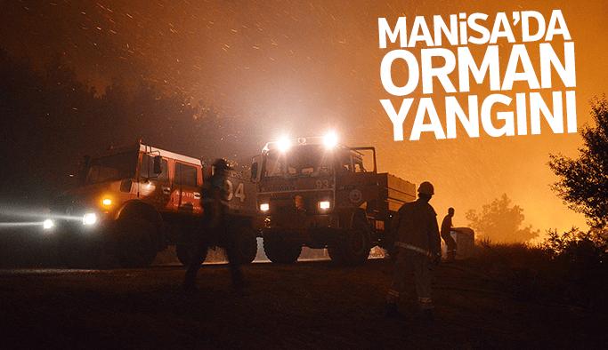 Manisa ve İzmir'de orman yangını