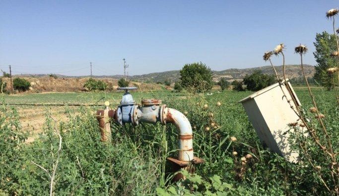 Kula'da 840 dekar arazi suyla kalkınacak
