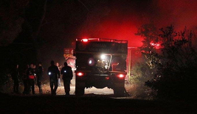 Manisa'da orman yangını 2 hektar alan kül oldu