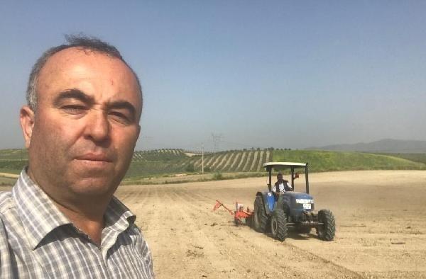 Salihli'de pamuk ekimi başladı