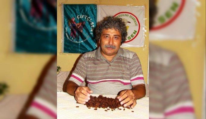 Üzüm-Sen'den bağcılık ve üzüm raporuna tepki