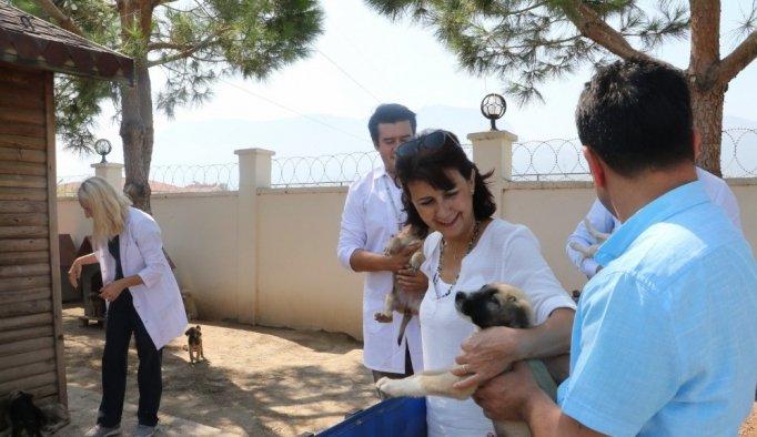 Manisa'da Hayvan Bakım Merkezi bayramda görevde