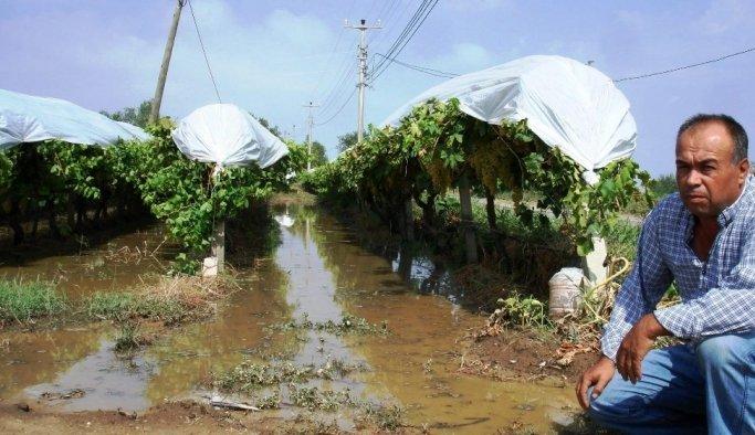 Sarıgöl'de dolu ve fırtına zarara yol açtı