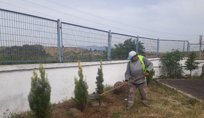 Turgutlu'nun dört bir yanı yeşilleniyor
