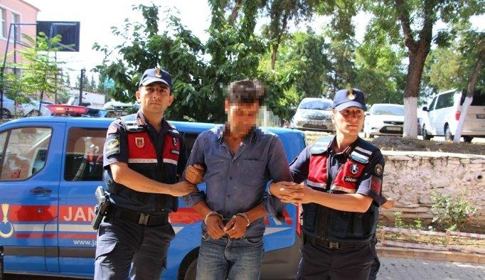 Kenevirleri sularken yakalanan uyuşturucu tacirleri tutuklandı
