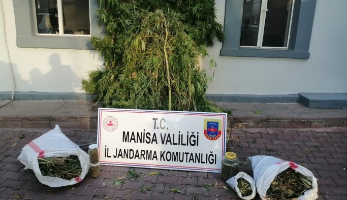 Manisa'da uyuşturucu operasyonu: 1 kişi gözaltında