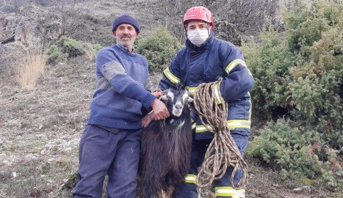 Dağda mahsur kalan keçiyi itfaiye kurtardı