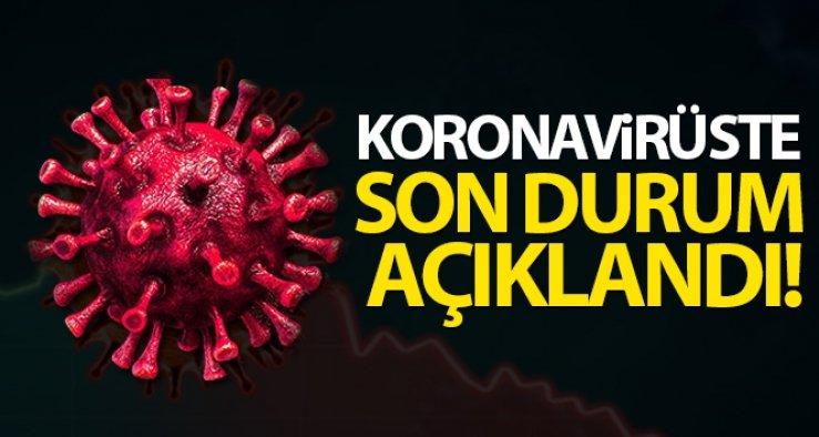 Türkiye'de son 24 saatte 7.909 koronavirüs vakası tespit edildi