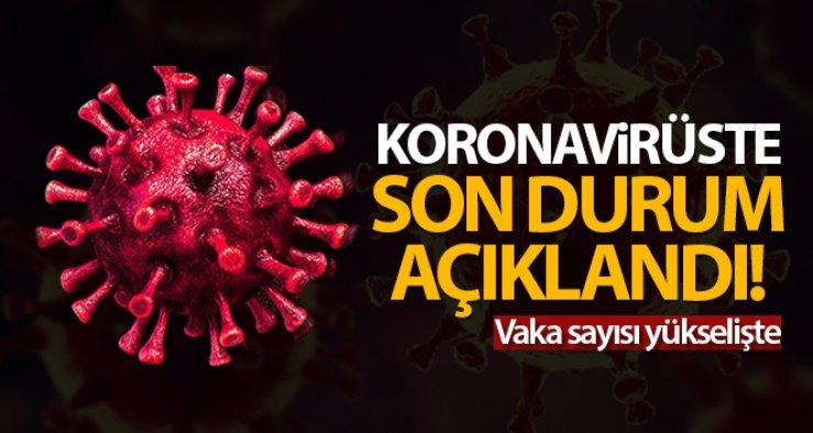 Türkiye'de vaka sayısı yükselişte