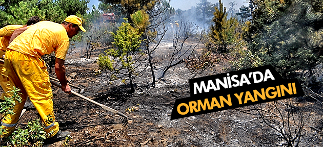 MANİSA DEMİRCİ'DE ORMAN YANGINI