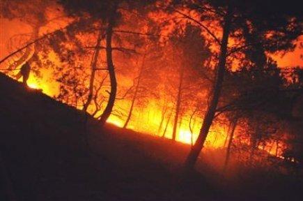 Spil Dağı'ndaki Yangında 15 Hektar Kızılçam Ormanı Zarar Gördü