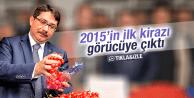 2015'in İlk Kirazı...