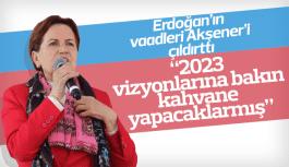 """Meral Akşener """"Erdoğan'ın 2023 vizyonuna bakın kahvene yapacakmış"""""""