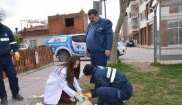 Yunusemre'de hayvan ambulansı hizmet...