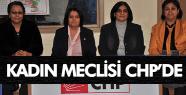 MANİSA KADIN MECLİSİ CHP'DE