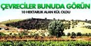 SALİHLİ'DE 10 HEKTARLIK ALAN KÜLE DÖNDÜ