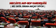 TBMM'DEKİ TÜRKLÜK TARTIŞMASINDA AKP- BDP KARDEŞLİĞİ