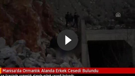 Manisa'da ormanlık alanda erkek cesedi bulundu