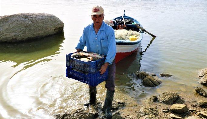 Denizi olmayanManisa'dan balık ihraç ediyorlar