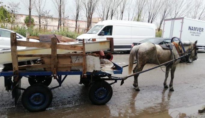 Manisa'da at arabaları trafikten men edildi
